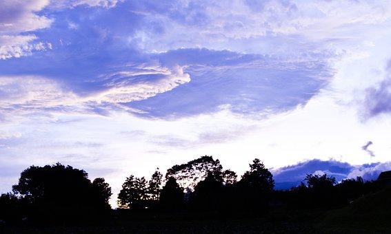 Cloud Ship, Cloud, Sky, Beauty, Purple, White, Forest
