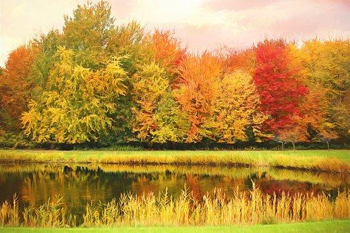 Fall, Autumn, Trees, Background, Scenery, Scene