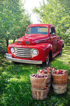 Vintage, Red, Truck, Apple Orchard, Apples, Harvest