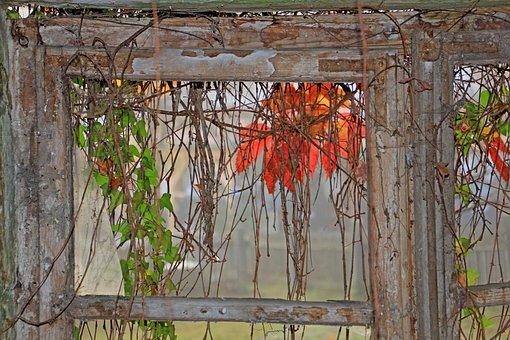 Autumn, Old, Window, Ruin, Rest, Leaves, Mood