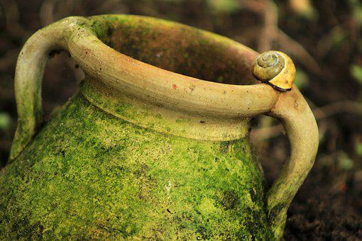 Vessel, Flower Pot, Jug, Transitional, Nature, Ceramic