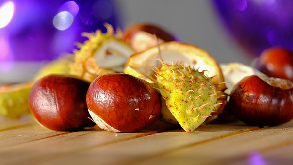 Chestnut, Fruit, Autumn, Prickly, Autumn Fruit, Buckeye