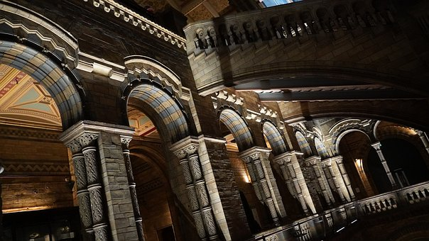 Natural History Museum, Hall, London, Fossiles, Museum
