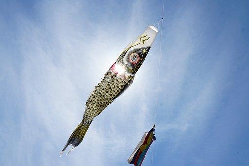 Japan, Culture, Traditional, Carp Streamer, Sky, Skay