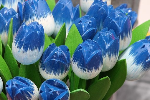 Tulips, Wooden Tulips, Decoration, Green, Blue