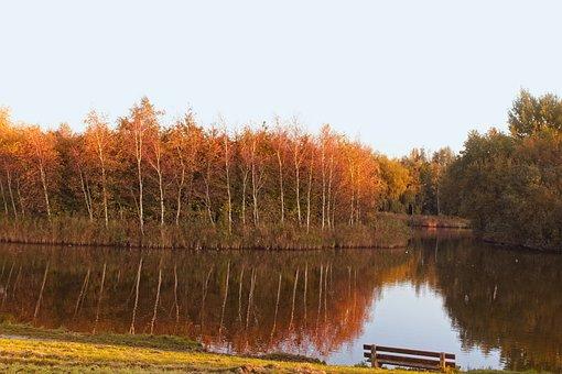 Pond, Water, Autumn, Park, Landscape, Avondstemming
