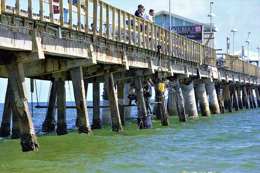 Divers Repair, Pier, Below Tourists, Ocean Fishing Pier