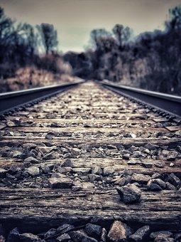 Train, Tracks, Trees, Transportation, Railroad, Transit