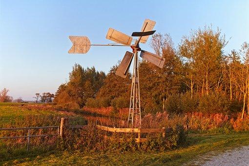 Setting Sun, Autumn, Park, Landscape, Avondstemming