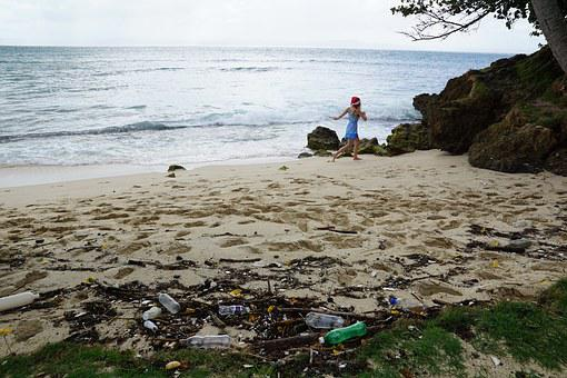 Pollution, Ecology, Caribbean, Garbage, Beach, Sea