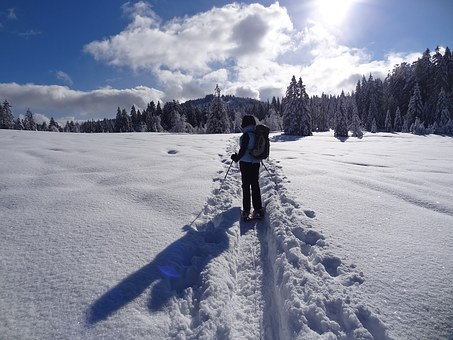 Snow, Snow Shoes, Trace, Sun, Winter