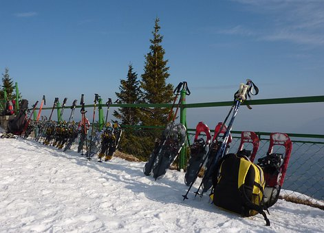 Snow Shoes, Snowshoeing, Winter, Snow, Winter Sports