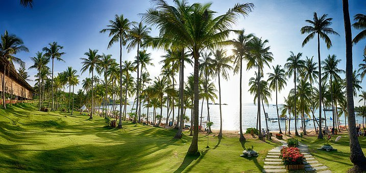 Sun, Grass, Han Thom, Phu Quoc, Vietnam, Holiday, Relax