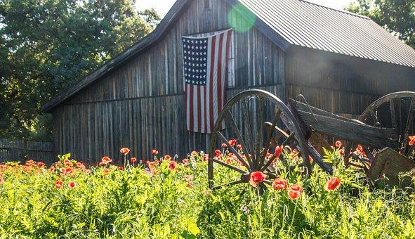 Barn, Flag, Farm, Poppies, Poppy, Sun, Landscape