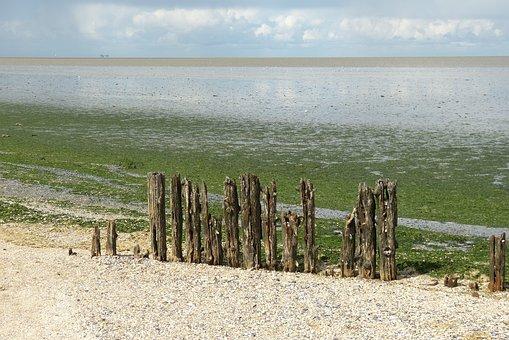 Sea, Netherlands, North Sea, Hiking, Coast, Sky, Ebb