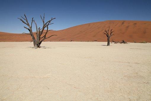 Namibia, Sossusvlei, Africa, Desert Landscape