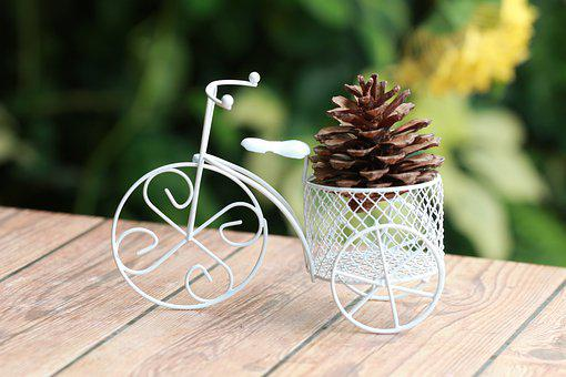 Bike-friendly, Two Pine, Pine Cones With The Bike