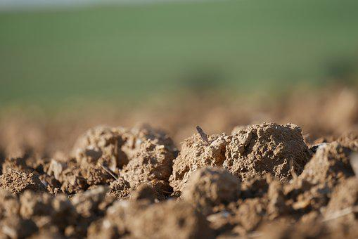 Arable, Earth, Field, Agriculture, Ground, Landscape