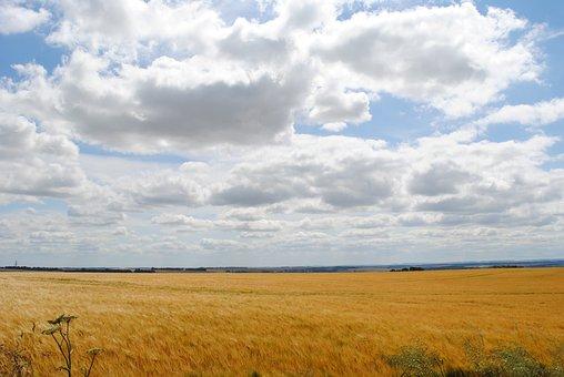 Clouds, Nature, Landscape, Field, England, Oxfordshire