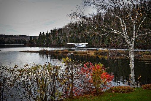 Landscape, Fall, Seaplane, Trees, Birch, Autumn, Leaves