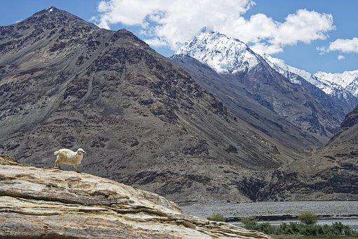 Tajikistan, Province Of Mountain-badakhshan, Hindu Kush