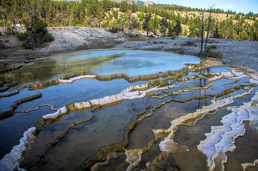 Yellowstone, Thermals, Park, National, Wyoming