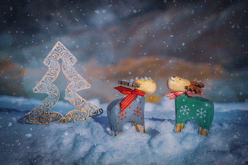Reindeer, Deco, Christmas, Advent, Christmas Motif