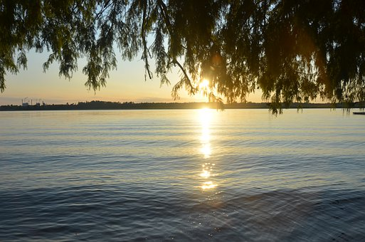 Riverbank, Sunlight, Sunshine, River, Vegetation
