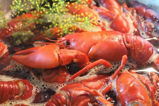 Crayfish, Kok, Seafood, Cook