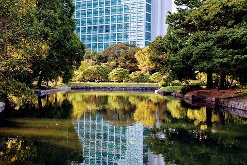 Landscapes, Japan, House, City, Shibuya, Street, Town