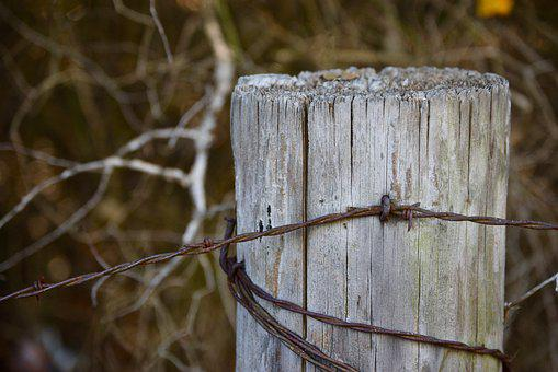 Fence, Wire, Pasture, Rusty, Post, Nail, Wood, Barb