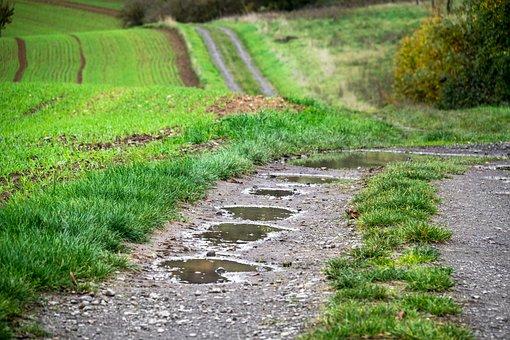 Away, Puddle, Lane, Swinging, Trail, Hiking, Walk