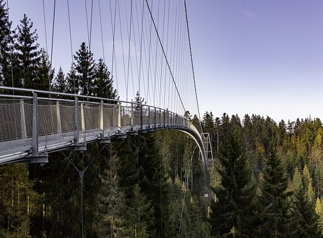 Bridge, Forest, Black Forest, Architecture, Nature