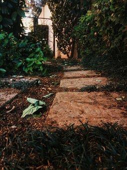 Path, Nature, Pl, Trail, Landscape, Autumn, Mood, Walk