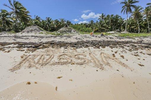 Dominican Republic, Sargisova Sea, Journey, Sea, Sun