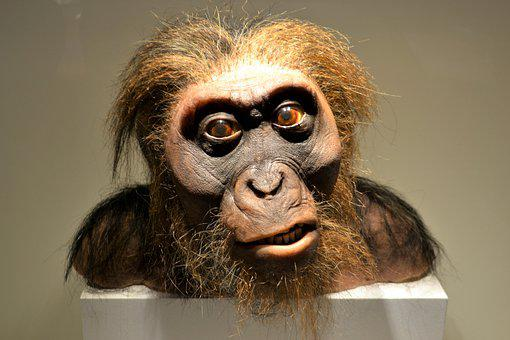 Neanderthal, Caveman, Prehistoric, Primitive, Human