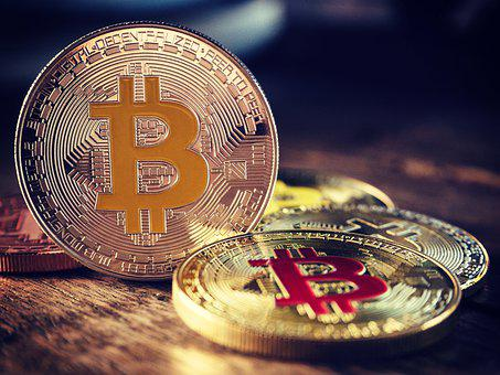 Coin, Bitcoin, Business, Money, Cryptocurrency