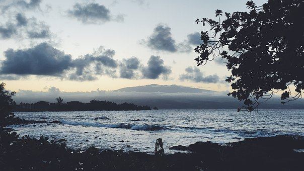 Beach, Hawaii, Tropical, Ocean, Sea, Water, Summer