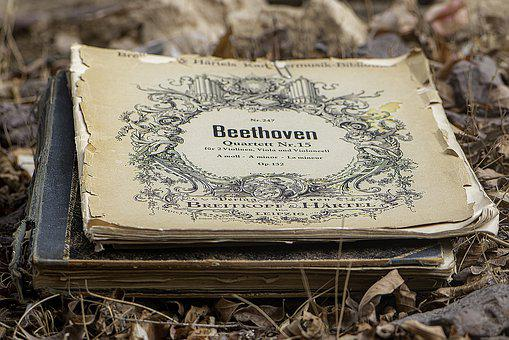 Composer, Inspiration, Classic, Harmony, Beethoven