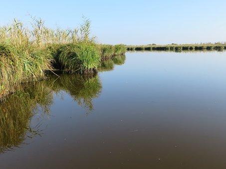 Loire Atlantique, Brière, Marsh, Pond, Calm, Flat, Wild
