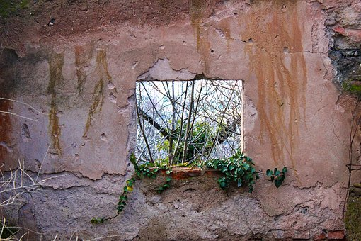 Window, Hole, Green, Tree, Wall, Texture, Rusty, Brick