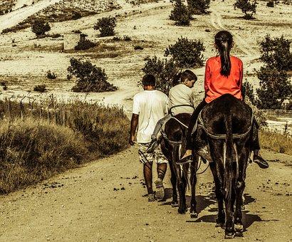 Donkey Ride, Kids, Donkey, Fun, Children, Nature