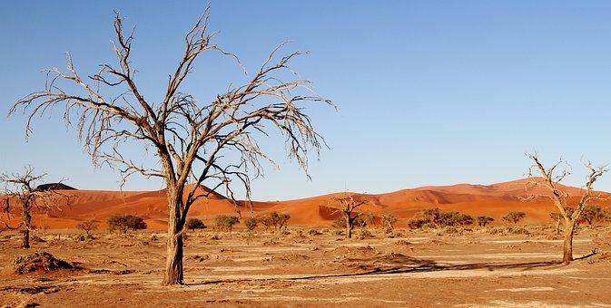 Desert, Namibia, Dunes, Africa, Sand Dune, Sossusvlei