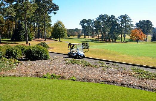 Golf Course, Golf Cart, Greens, Outdoors, Sport, Grass