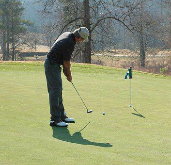Golfer, Putting, Green, Golf, Sport, Course, Grass
