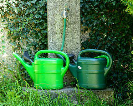 Watering Hole, Watering Can, Casting, Irrigation, Pot