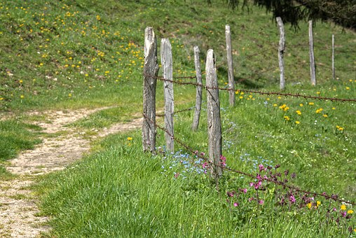 Away, Path, Post, Pasture Fence, Fence, Demarcation
