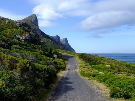 National Park, Cape Of Good Hope, South Africa