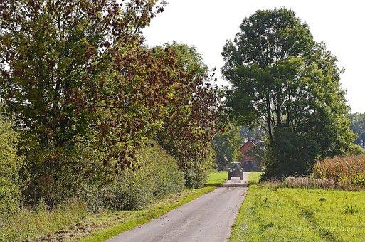 Münsterland, Rural, Dirt Track, Autumn, Farm, Homestead