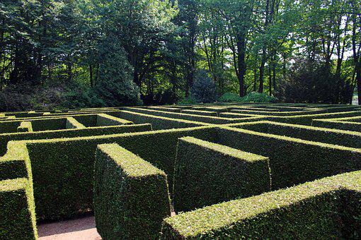 Labyrinth, Maze, Garden, Hedge, Structure, Green